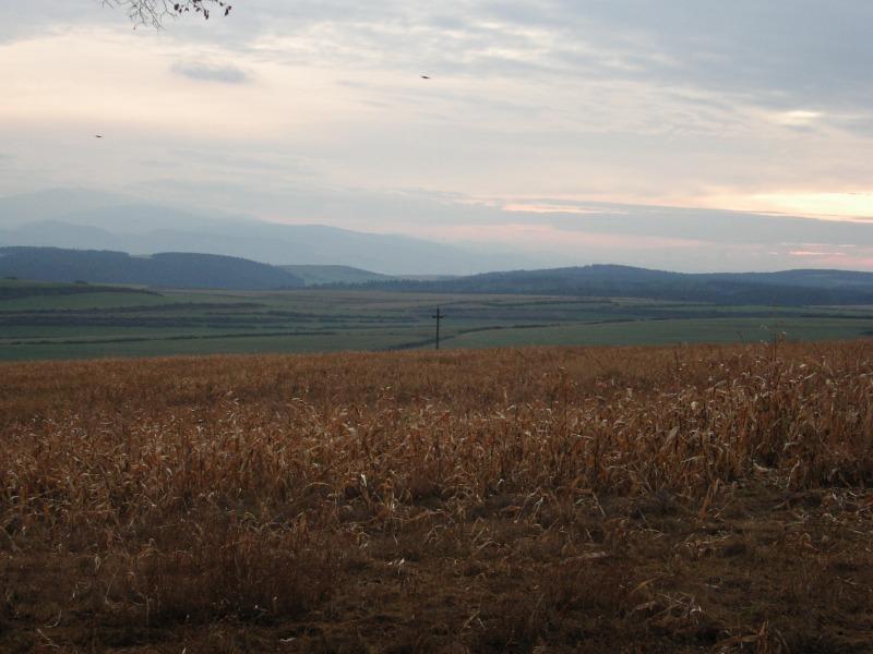 レボチャ、スロバキア(2004)